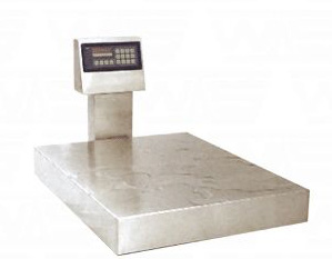 Floor scale1